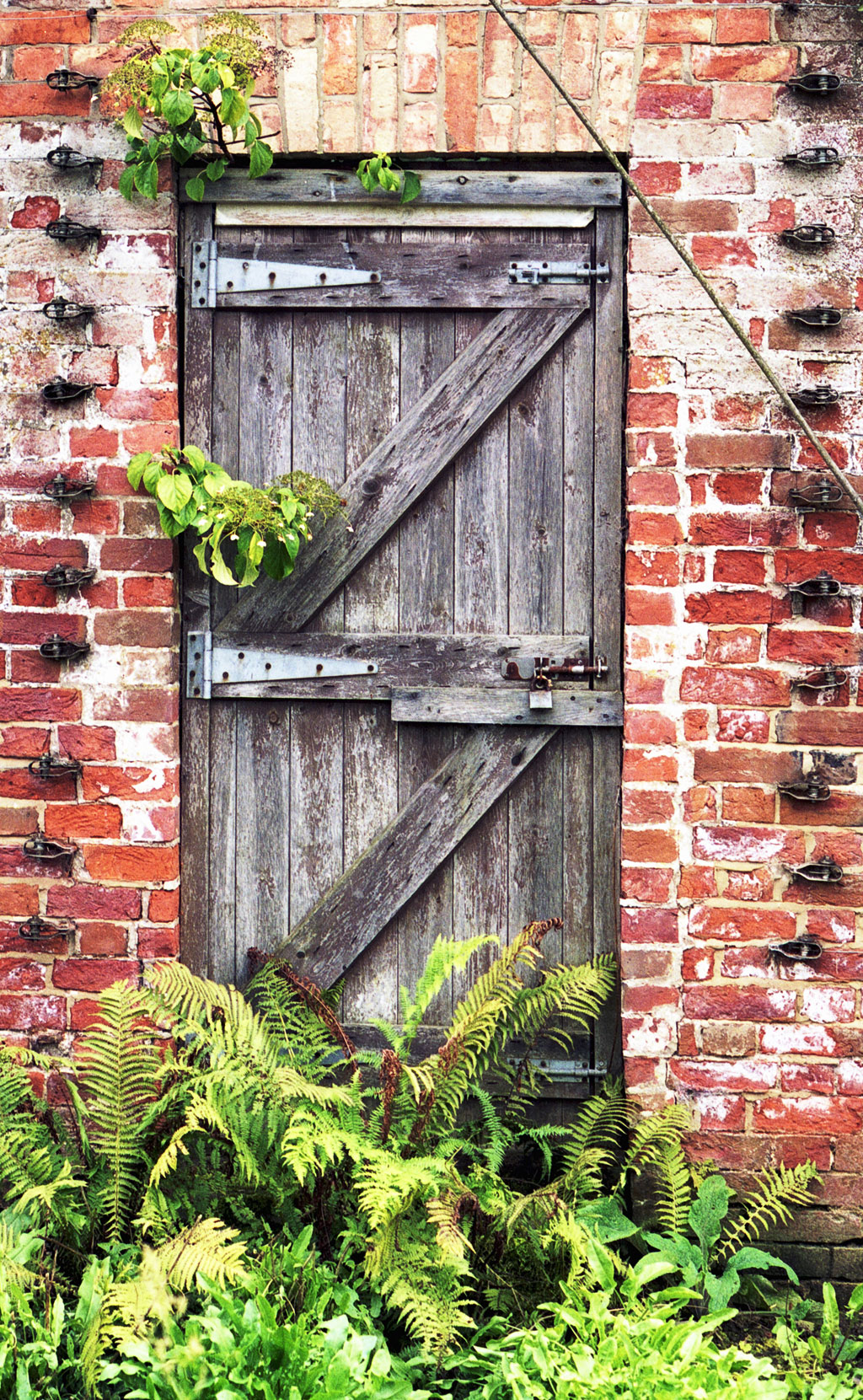 garden door 10 10 from 99 votes garden door 4 10 from 33 votes 1024 x 1661 · 766 kB · jpeg